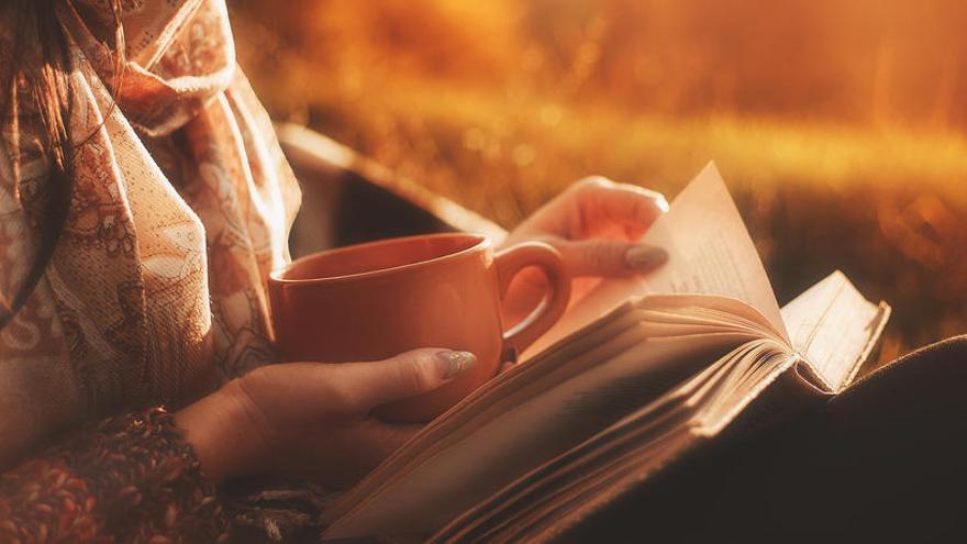 Descubre las novedades literarias de este otoño