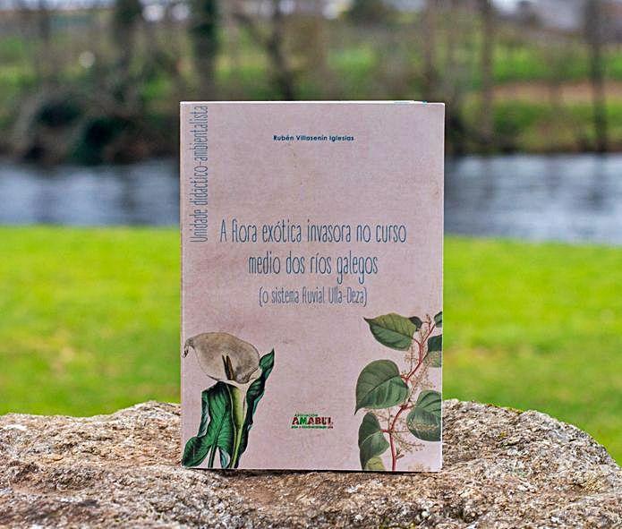 El libro publicado