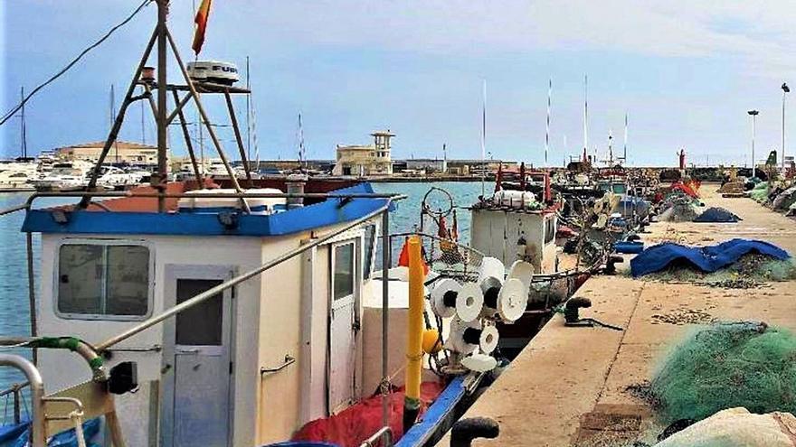 La nueva megapiscifactoría de El Campello «salva» la Cofradía de Pescadores
