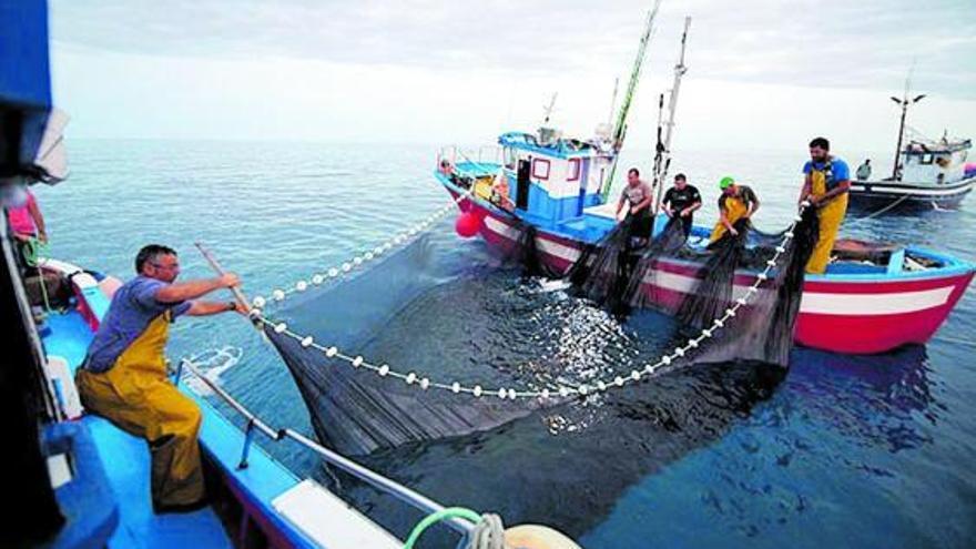 La realidad del sector pesquero