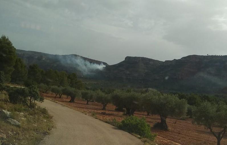 Incendio forestal en Jalance próximo a la nuclear de Cofrentes