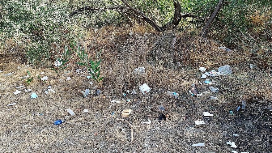 Los botellones y las fiestas ilegales se multiplican en los Montes de Málaga