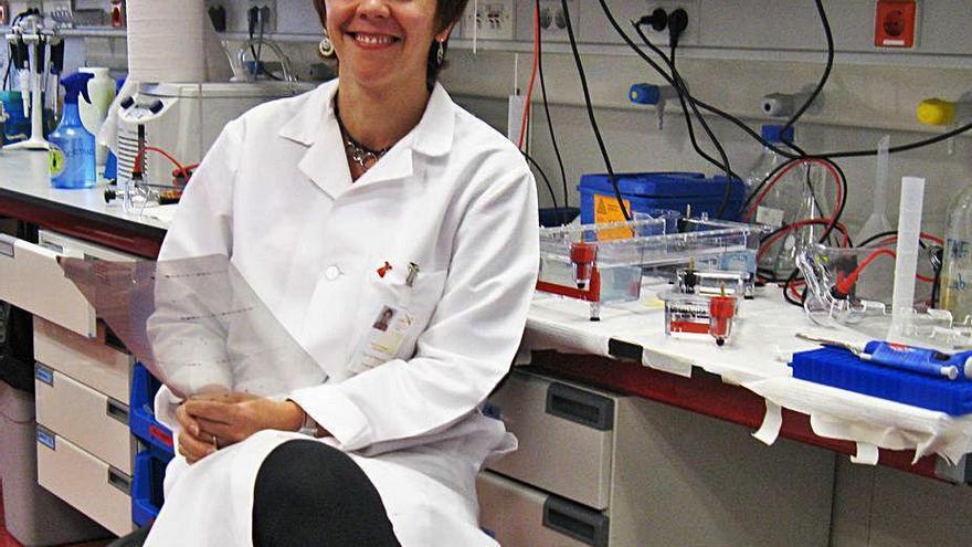 Soengas y su equipo descubren cómo el melanoma engaña al sistema inmune
