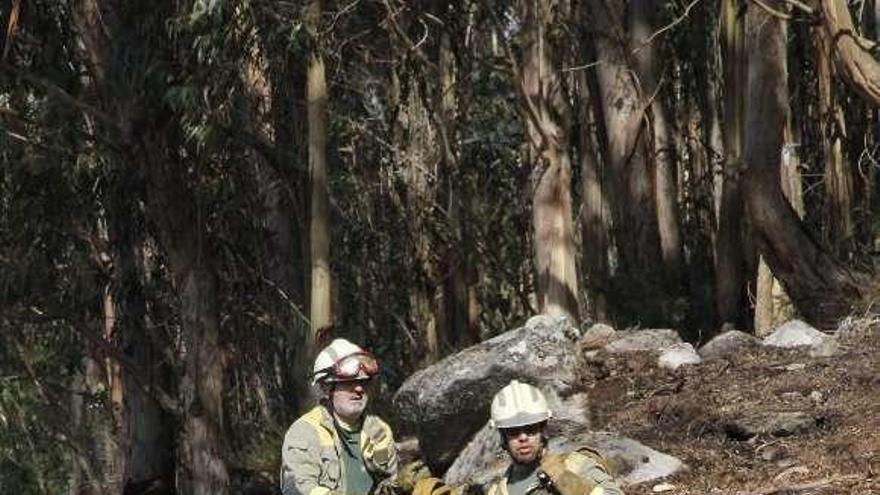 La ola de 90 incendios de las dos primeras semanas del año arrasa 600 hectáreas