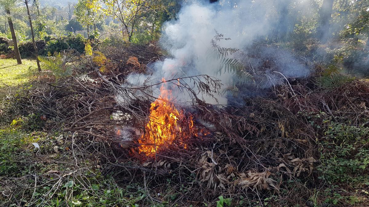Las quemas forestales y agrícolas quedan prohibidas desde el sábado