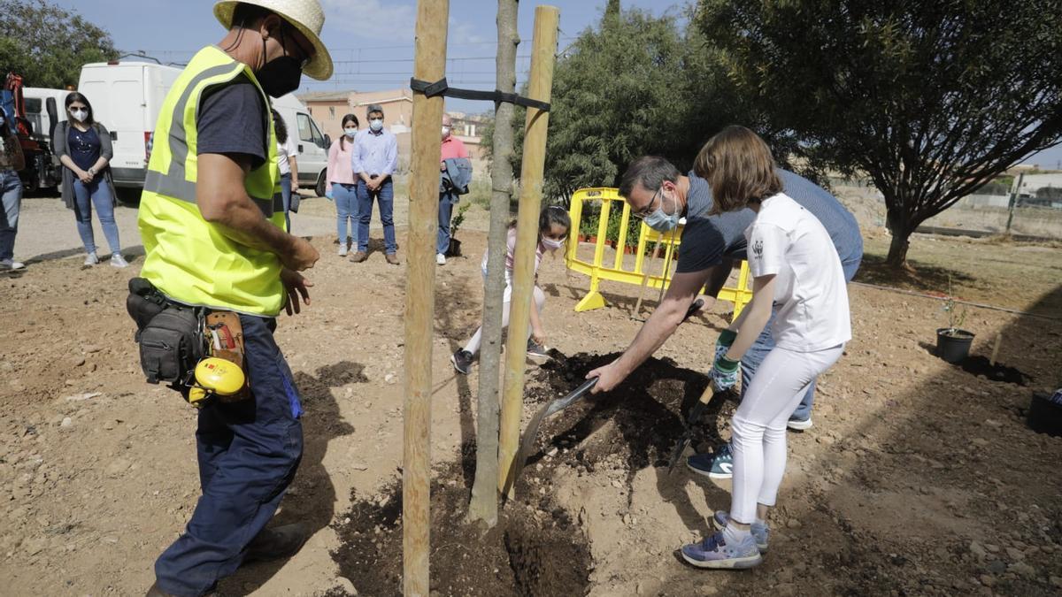 Celebran el Día de Europa sembrando más de 200 plantas arbustivas en Palma