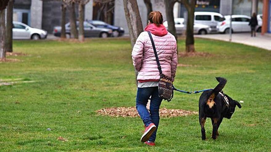 Veten els missatges de gent que lloga la mascota per passejar-la