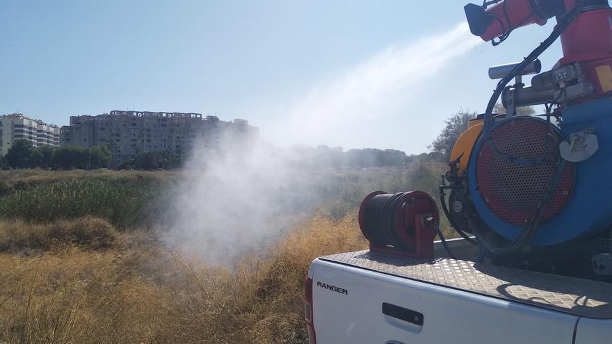 La campaña antimosquitos arranca este mes de mayo en El Campello y refuerza los tratamientos en diversas zonas