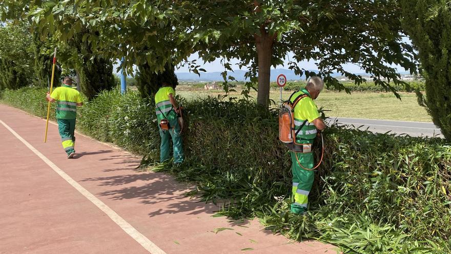 La Pobla de Vallbona adjudica el contrato de jardinería, uno de los más grandes de su presupuesto