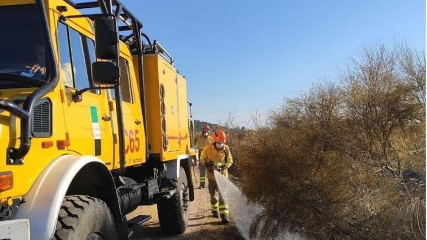Arden 25 hectáreas en 12 incendios forestales en una semana