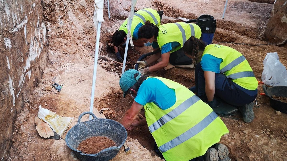 Los análisis de ADN permiten identificar a cinco víctimas exhumadas en Son Coletes