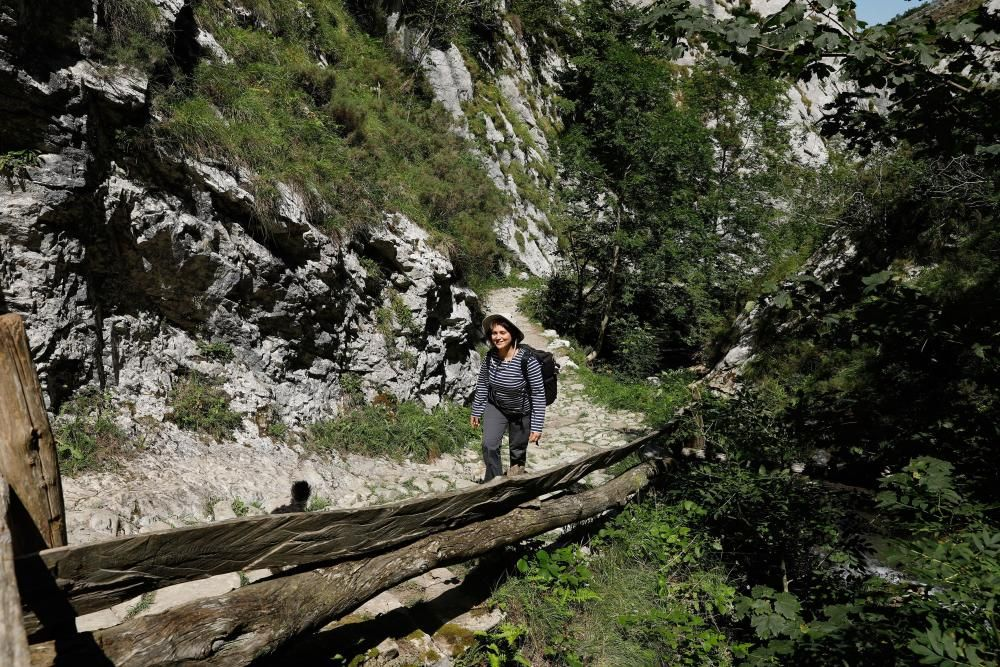 Rutas por Asturias: por las Foces de El Pino