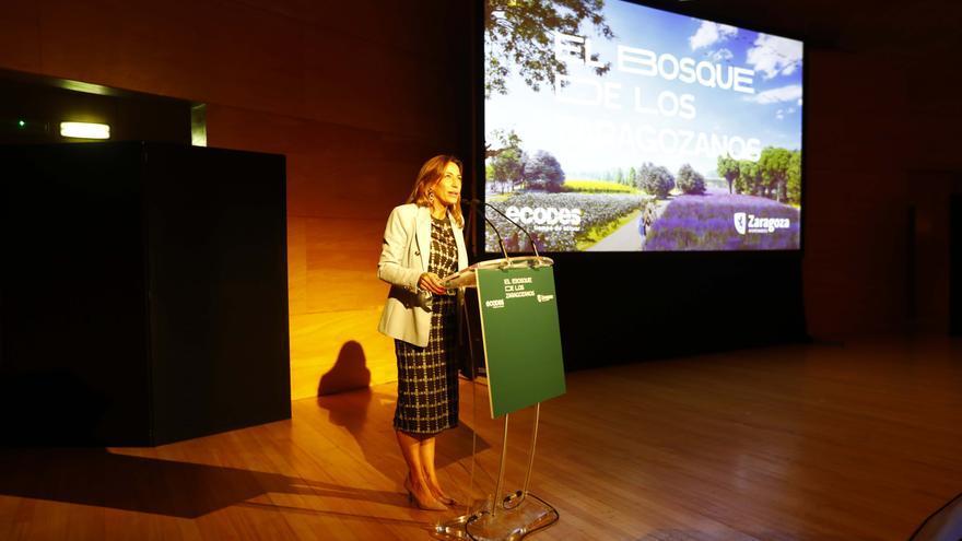 Zaragoza invertirá 40.000 euros para el estreno del bosque urbano