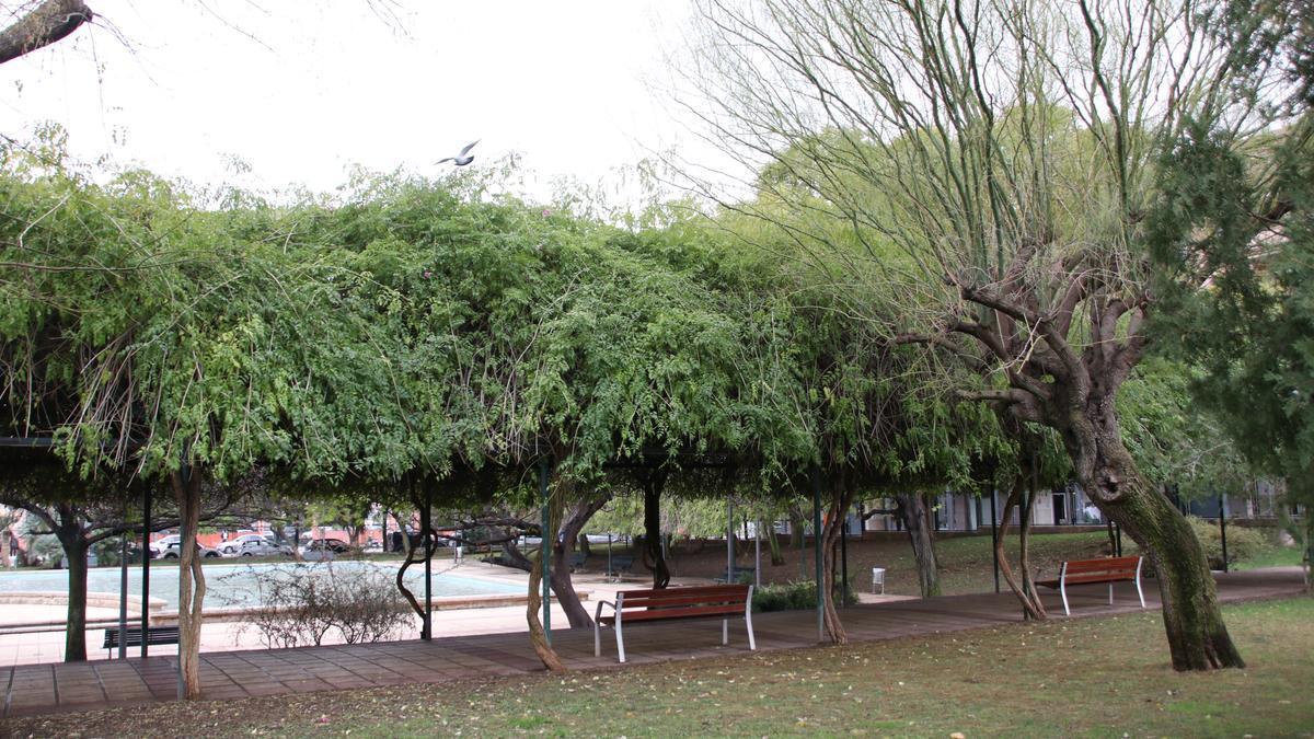 Cort reabre progresivamente los parques de Palma.
