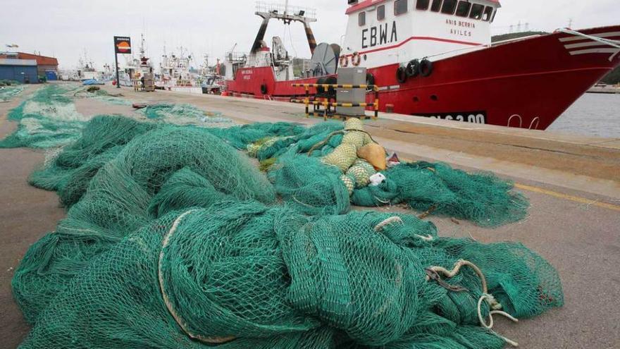 España acude al debate de los cupos de pesca con la idea de evitar los recortes planteados