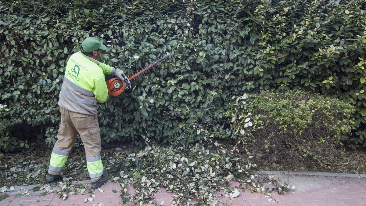El mantenimiento de zonas verdes se presta fuera de contrato.