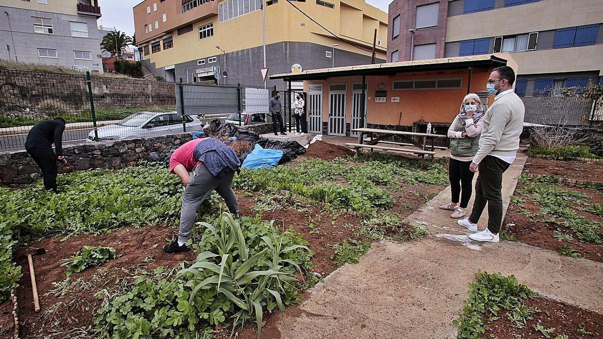 Proyecto Faro tutela la recuperación del huerto urbano de El Sobradillo.