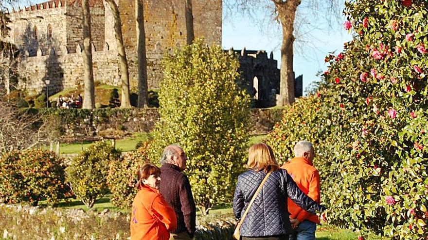 El castillo de Soutomaior impulsará las visitas guiadas a sus jardines de camelias