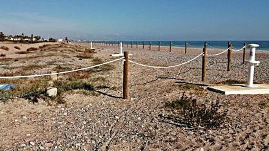 Inversión de 22.000 euros  para proteger el cordón dunar
