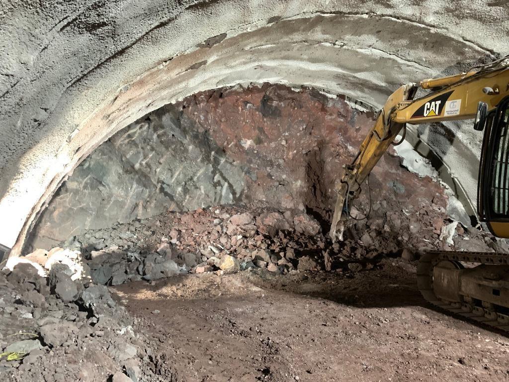 Paralizadas en La Aldea las obras del túnel de Guguillo por un árbol fosilizado