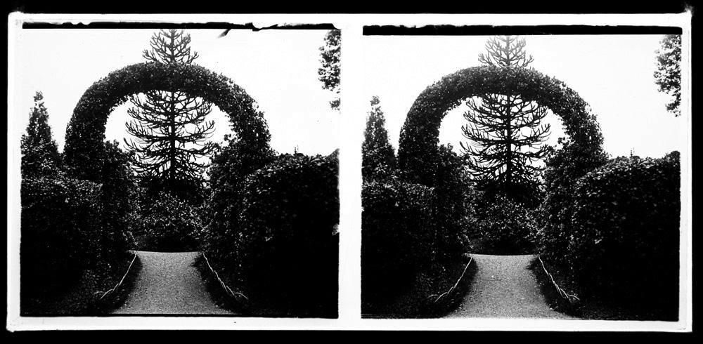 jardines 4.jpg