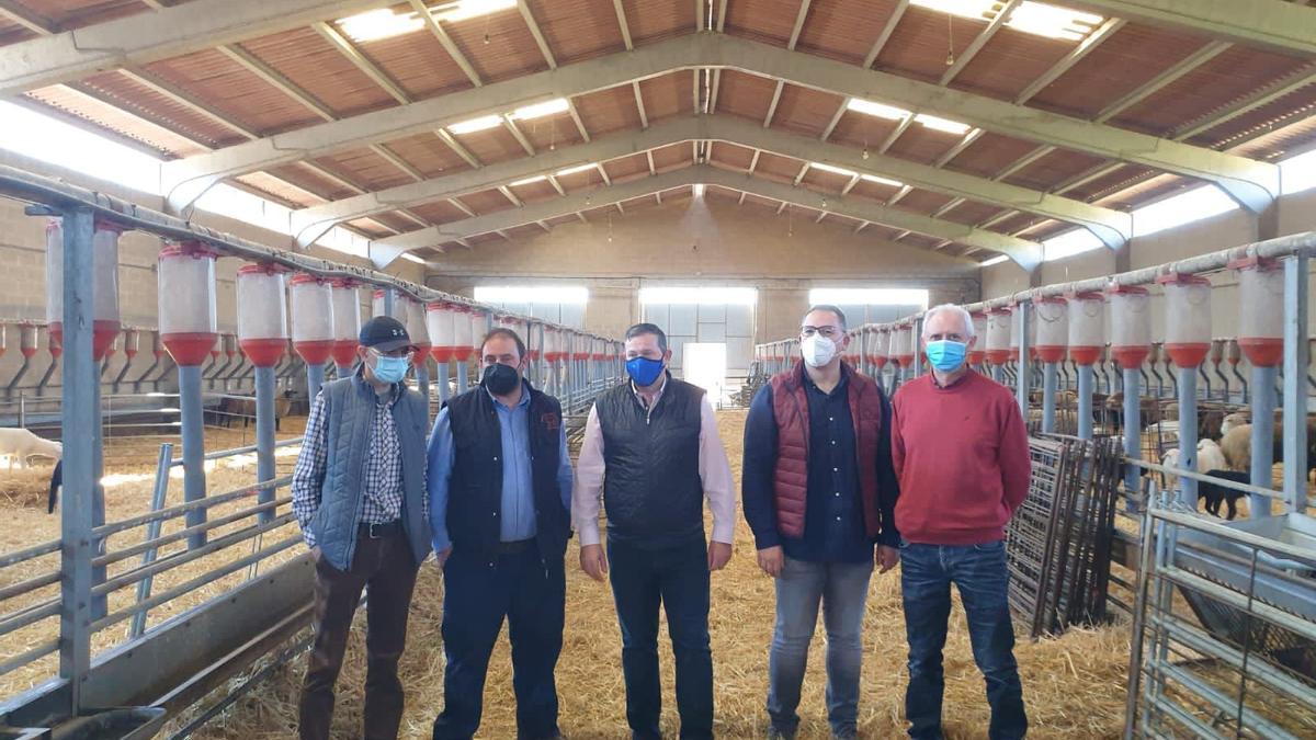 Visita de los vicepresidentes Faúndez y Prada a la Cooperativa de Ovino de Alcañices.