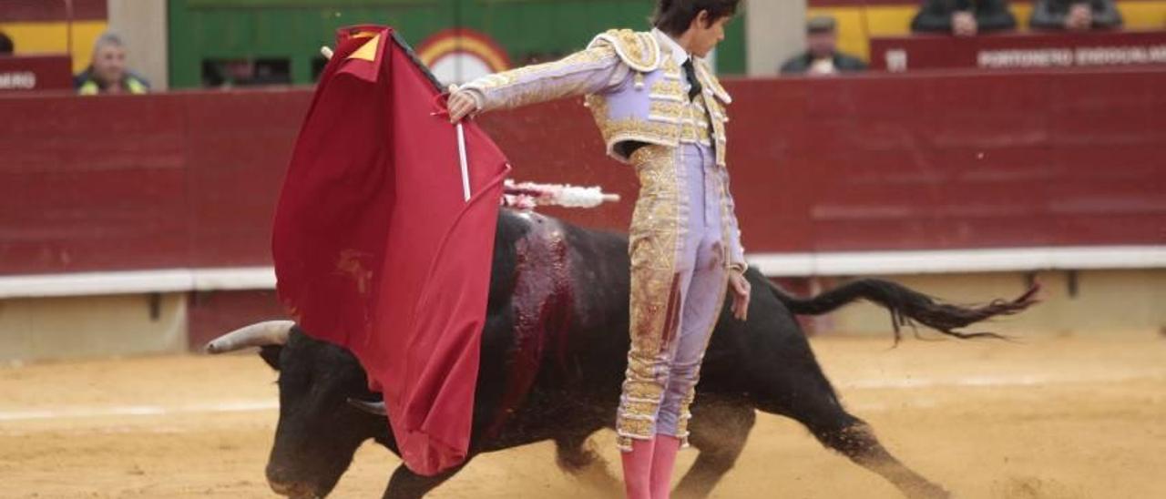 La plaza de toros lanza abonos para jóvenes para la Magdalena por 60 euros