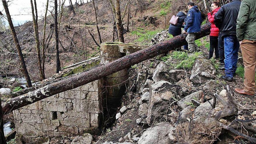 Dos años a la espera del parque forestal sobre el monte quemado de Nigrán