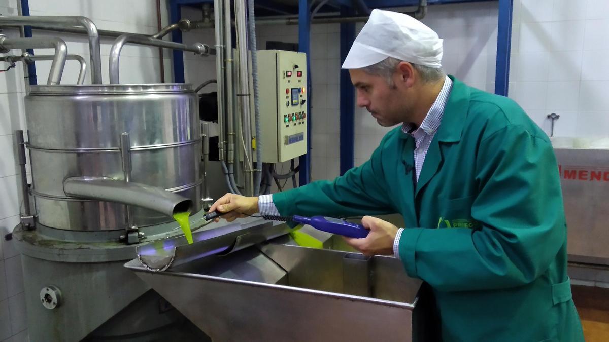Técnico de la DOP Priego de Córdoba en un control de calidad durante la extracción de aceite.
