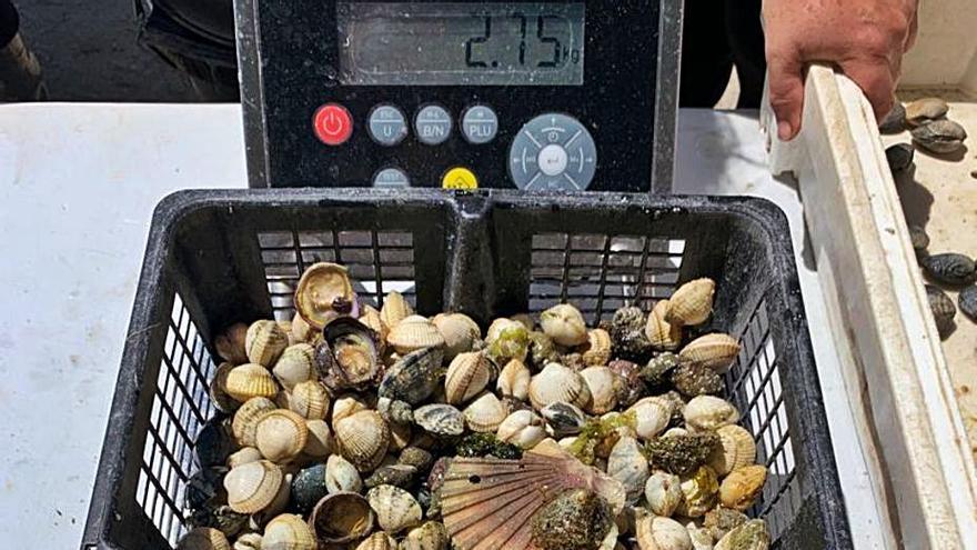 Identifican a autocaravanistas portugueses retirando marisco en O Bao