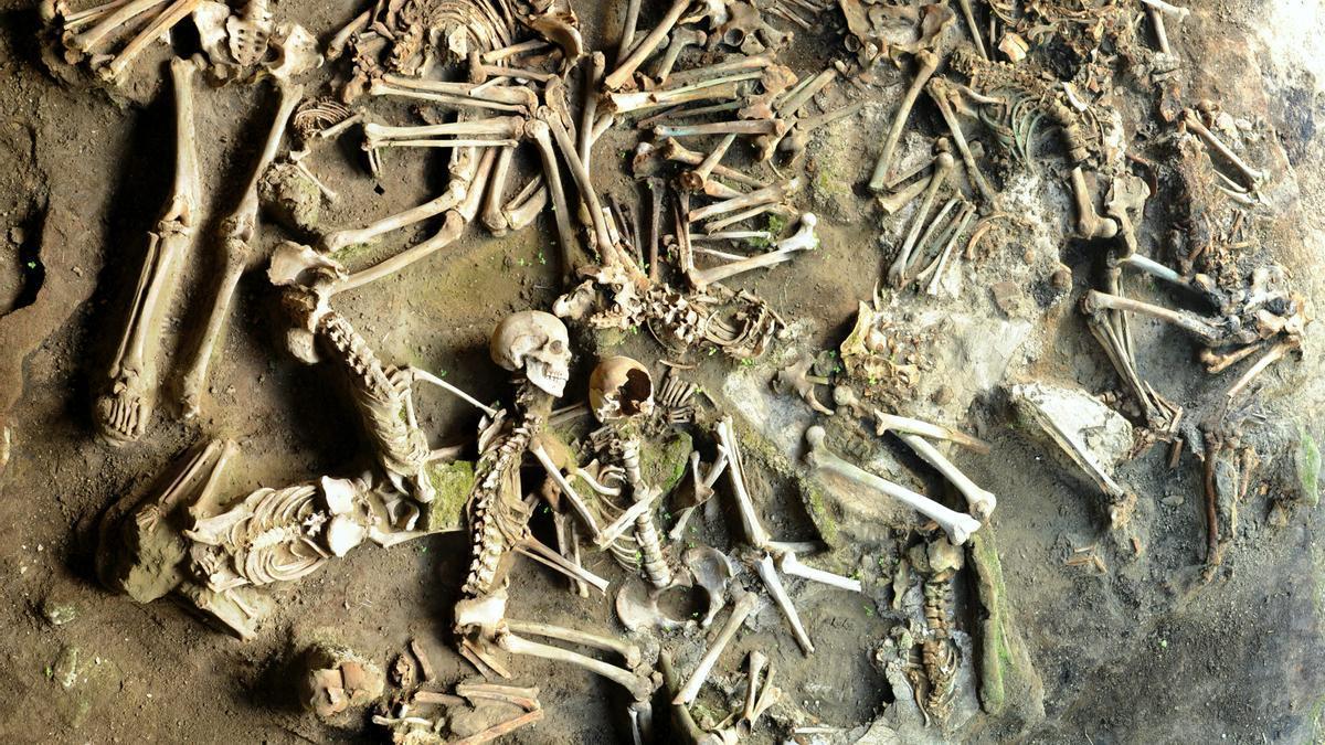 Restos óseos examinados por los arqueólogos para el estudio.