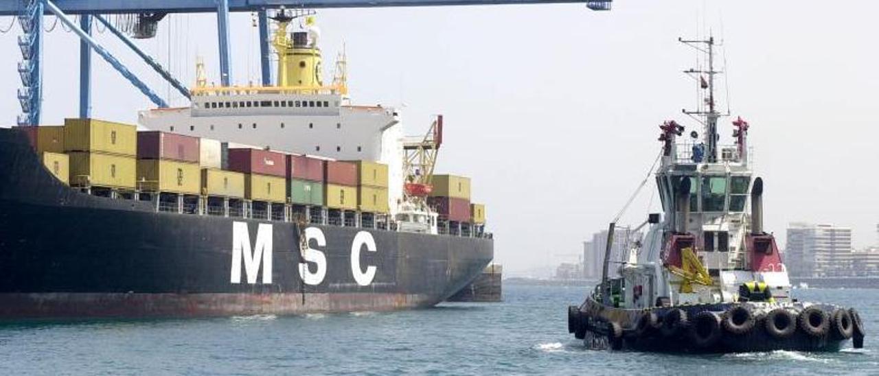 Un remolcador asiste a un buque de MSC junto a la terminal de contenedores de Opcsa del Puerto de Las Palmas, en una imagen de archivo. |