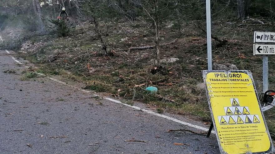 El Ibanat abre fajas contra incendios en Santa Eulària