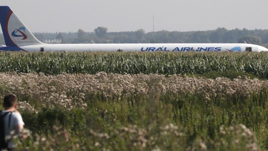 Un avión aterriza de emergencia en una plantación de maíz de Rusia