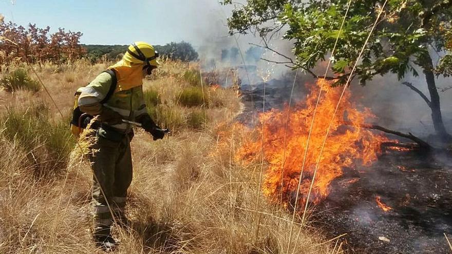 El incendio de Granja de Moreruela ha quemado 56 hectáreas de pasto
