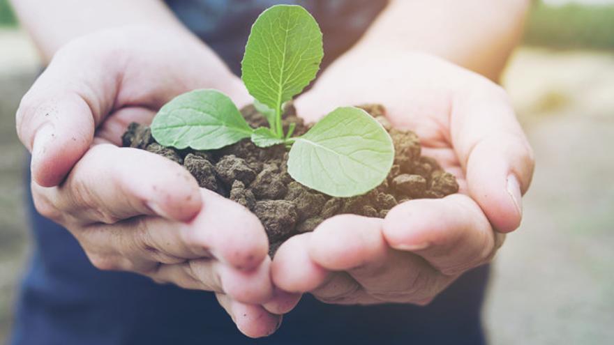 SOSTENIBILIDAD | BBVA Asset Management lanza la tercera convocatoria solidaria del fondo Futuro Sostenible ISR