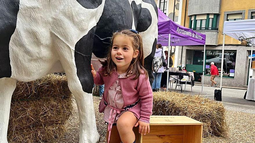 """Mercado tradicional y """"photocall"""" con vaca en Noreña"""