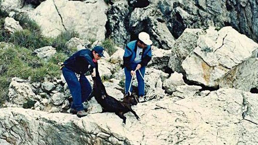 El GEN tacha de «irresponsable» al Consell por querer proteger la caza de cabras de es Vedrà