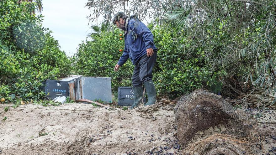 La Unió denuncia que las trabas telemáticas impiden que llegue una ayuda de 2,2 millones a los agricultores afectados por el covid