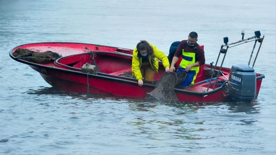 """""""Ahora que vuelve a haber demanda de lamprea, el río nos impide pescar"""", clama el sector"""