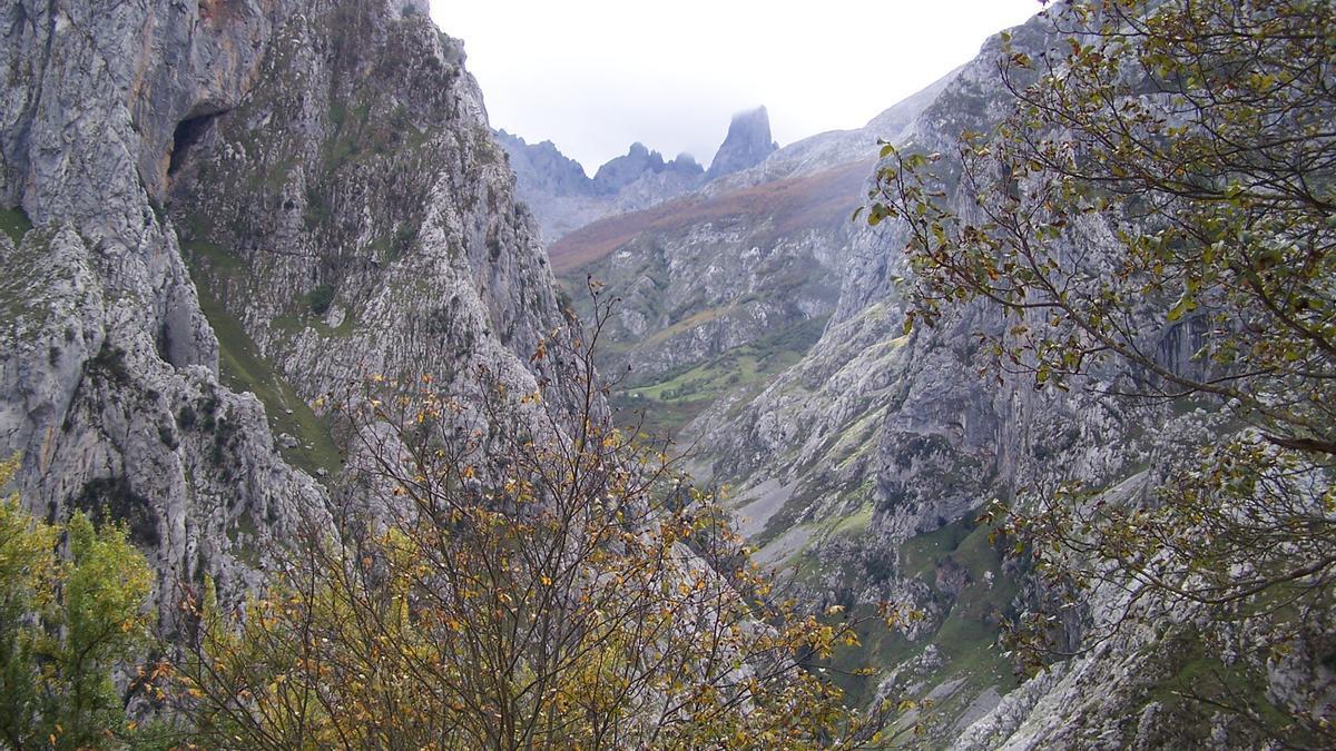 El Picu Urriellu (Naranjo de Bulnes), desde el mirador de Camarmeña.