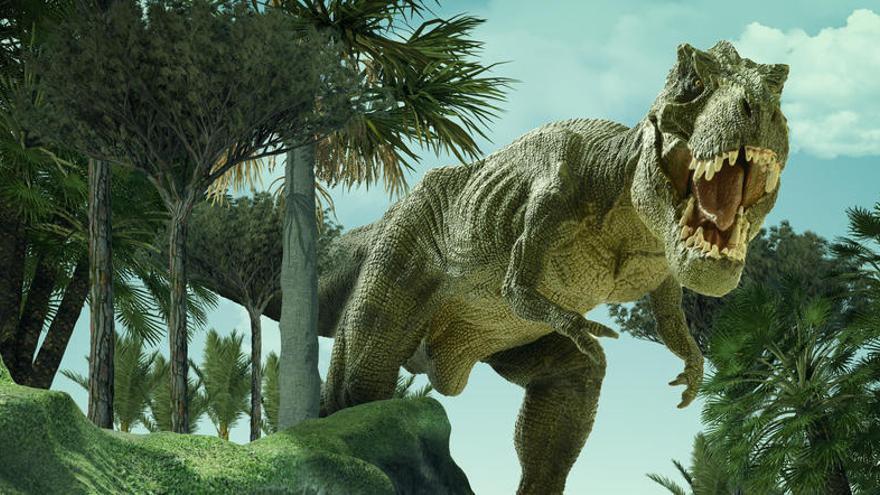 Un cráneo rígido sirvió al T. Rex para morder con el peso de seis toneladas