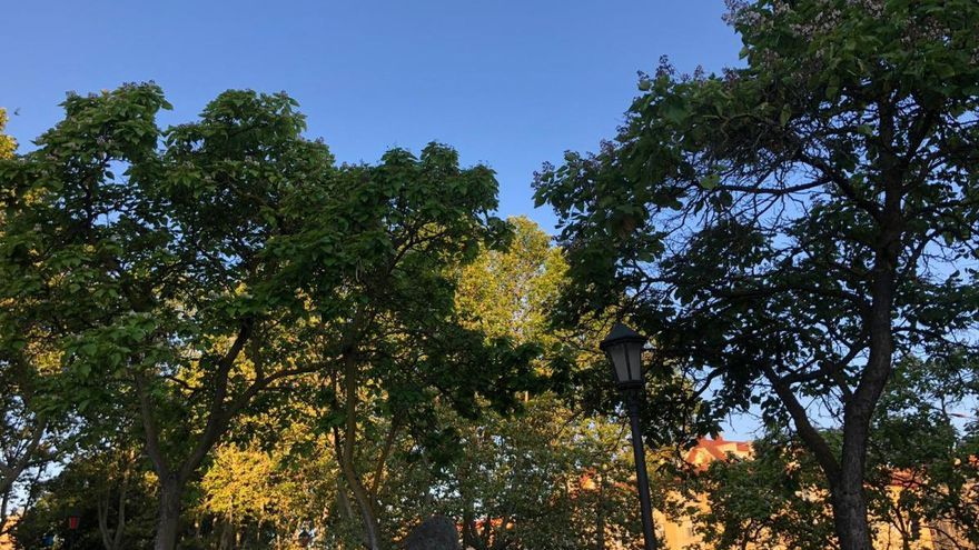 El tiempo en Zamora: el verano pide paso