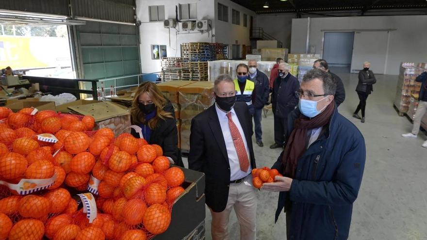 20 toneladas de clementinas para el Banco de Alimentos y Cáritas