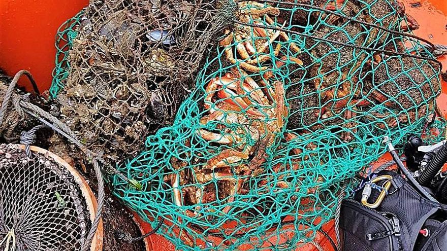 Gardacostas vuelve a poner de manifiesto la enorme presión que soporta el crustáceo