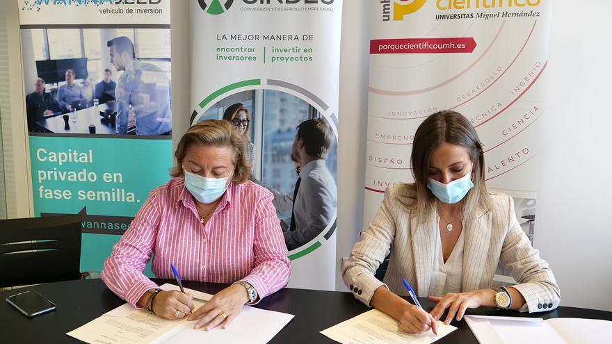 Wannaseed y la Fundación UMH colaboran para estimular el desarrollo de proyectos empresariales