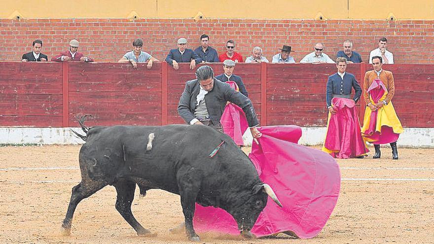 Fuentesaúco recibe un aluvión de llamadas para asistir a la novillada