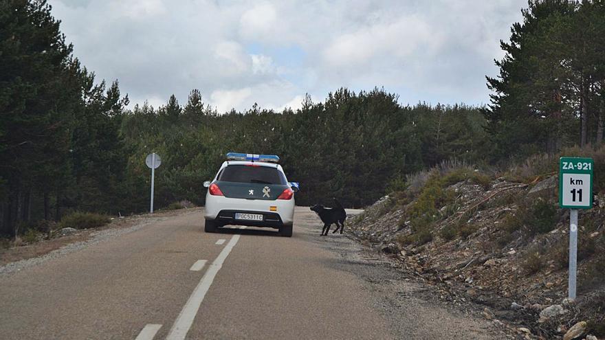 El paso de grandes camiones empeora la carretera de Rihonor a Ungilde