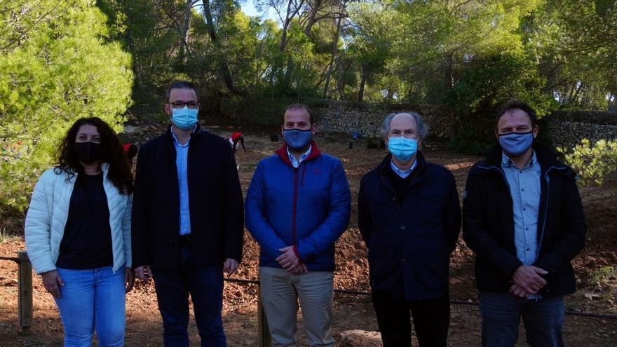 Govern, Cort y Cruz Roja colaboran en la reforestación del bosque de Bellver
