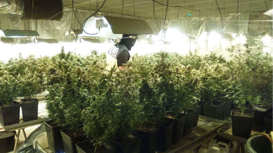 50 Festnahmen im Drogenmilieu während des Alarmzustandes